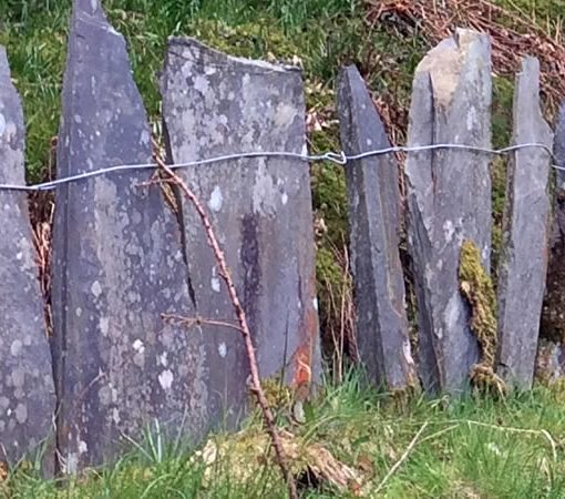 Slate fence, Tywyn